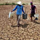 Belasan Desa di Maros Krisis Air Bersih, Warga Terpaksa Pakai Air Empang