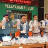 TNI AL Riau Sita 10 Ribu Baby Lobster dari Tangan Penyelundup